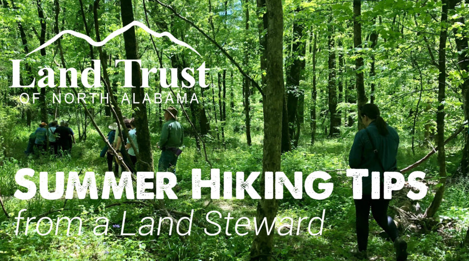 Summer Hiking Tips from a Land Steward